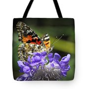 The Painted Lady Butterfly  Tote Bag