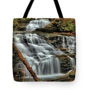 The Path Of Least Resistance Tote Bag