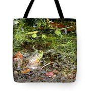 The Patient Frog Tote Bag