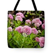 The Pink Cure Tote Bag