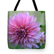 The Pink Dahlia-flower2 Tote Bag