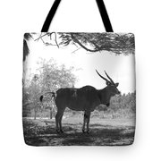 The Post Card In Black And White Tote Bag