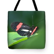 The Postman Takes Flight Tote Bag