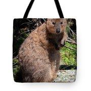 The Quokka Tote Bag