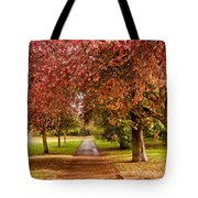 The Red Path Tote Bag