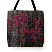The Resolution Of Fall Tote Bag