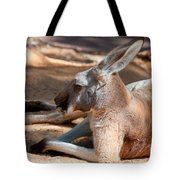 The Resting Roo Tote Bag