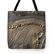 The Ribs And Spine Of Ichthyosaur Tote Bag