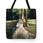 The Road Leading Home Tote Bag