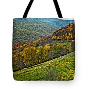 The Road To Glady Wv Painted Tote Bag