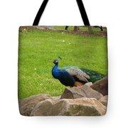The Rocking Bird Tote Bag
