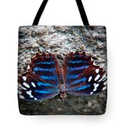 The Royal Blue Butterfly Tote Bag