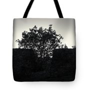 The Ruins Of The Castle Of Ali Pasha In Bw Tote Bag