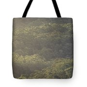 The Schlerophyll Forest Canopy Tote Bag