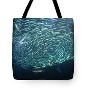 The School Fish Tote Bag