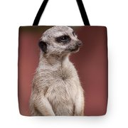 The Sentry Tote Bag