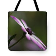 The Serenity Of Spring  Tote Bag