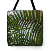 The Shade Of A Fern Tote Bag