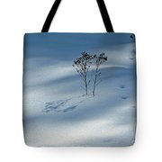 The Shadow Of Loneliness Tote Bag