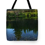 The Shadows Of Trees  Tote Bag