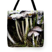 The Shroom Family Tote Bag