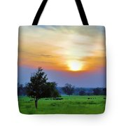 The Sky Was Drunk Tote Bag