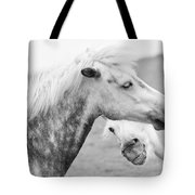 The Smiling Horse Tote Bag
