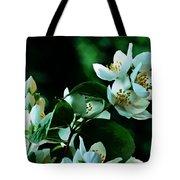The Soft White Blossom  Tote Bag
