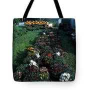 The Stand In Autumn Tote Bag by Wayne King