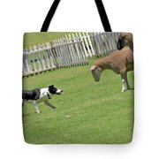 The Stare - Border Collie At Work Tote Bag