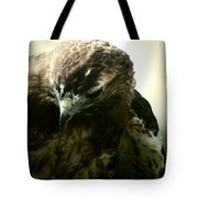 The Stare From The Air Tote Bag