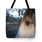 The Staring Eye Of A Clydesdale Horse Tote Bag