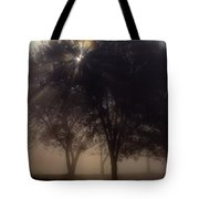 The Sun Peeks Through The Branches Tote Bag