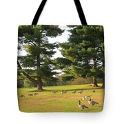 The Sunny Stroll Tote Bag