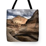 The Tanks Tote Bag