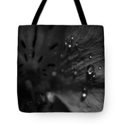 The Tears Have All Been Shed Tote Bag