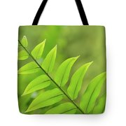 The Tip Of A Fern Tote Bag