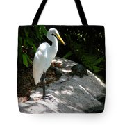 The Tortoise And The Heron Tote Bag