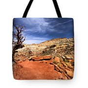 The Trail Ahead Tote Bag