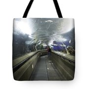 The Travelator At The Underwater World In Sentosa In Singapore Tote Bag
