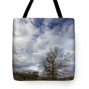 The Tree At The Side Of The Road Tote Bag