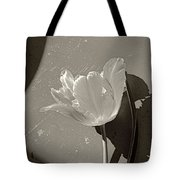 The Tulip And The Shadows Tote Bag