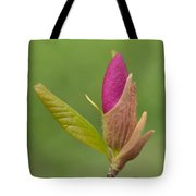 The Unvieling Tote Bag
