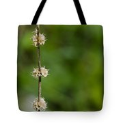 The Wand Of Winter Faces The Power Of A Green Spring Tote Bag