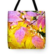 The Warm Glow In Autumn Abstract Tote Bag