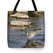 The Water Dance V4 Tote Bag