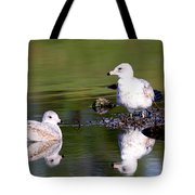 The Water's Fine Tote Bag