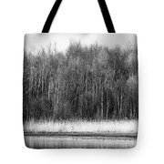 The Western Shore Tote Bag