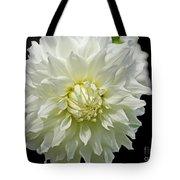 The White Dahlia Tote Bag