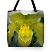 The Yellow Orchid Tote Bag